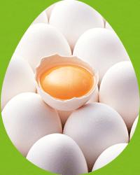 日卵加工フッターイメージ1